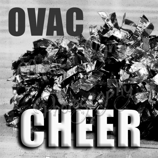 2017 OVAC High School Cheering Competition